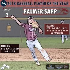 Palmer Sapp